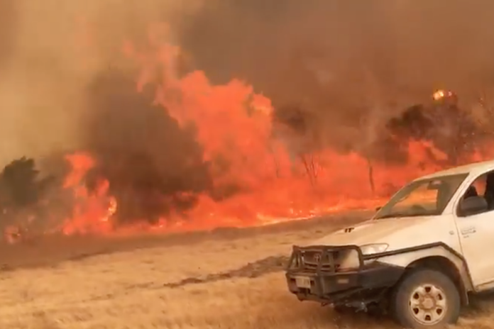 'Fire Tornado' in Australia Captured on Video
