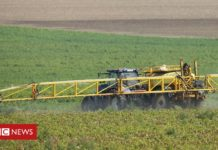 German firms Bayer and BASF fight $265m US fine over weedkiller