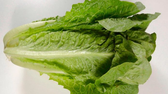 Bagged salad recalled after 37 hospitalized and over 600 people report illness