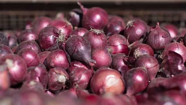 Giant Eagle recalling onions, prepared foods made with onions due to potential salmonella contamination